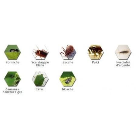 Antizanzare permecid pu insetticida contro insetti for Formiche volanti in casa